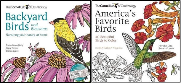 Coloring Enthusiasts Bird Lovers And Gardeners Will All Delight In An Exciting New Book Featuring Glorious Backyard Birds With Flowering Annuals