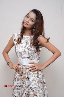 Telugu Actress Reshmi Thakur in Long Dress at Plus One ( 1) Audio Launch  0055.jpg