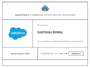 Tips for passing Salesforce Certified Commerce Cloud Digital Developer