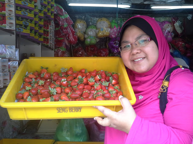 strawbery, cameron highland,