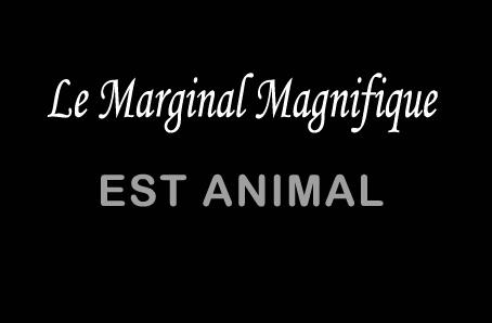 Fuck Charly Le Marginal Magnifique n'aime que les animaux