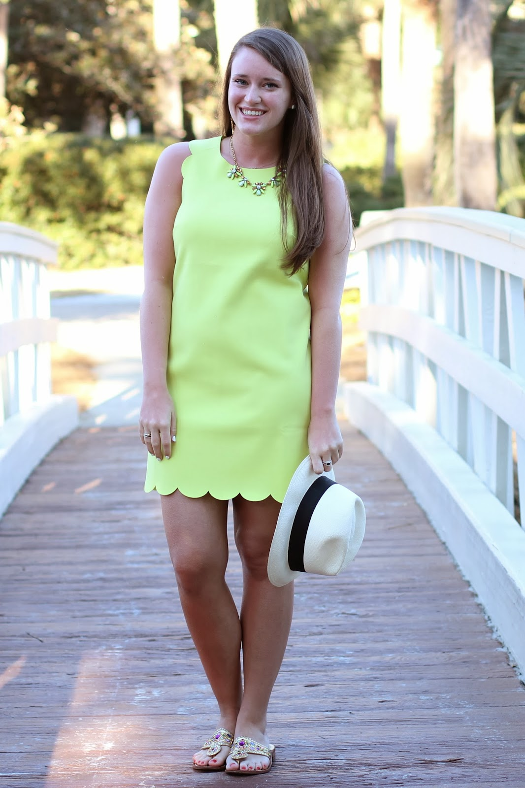 j. crew scallop shift dress, pale citrus j. crew, pale citrus, scallop dress, scalloped dress