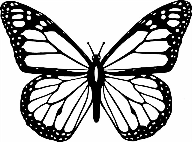 mariposas para colorear dibujos e imagenes mariposas