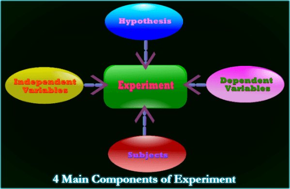 Diagram of Experiment Components