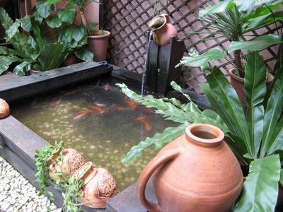 media pendidikan alternatif: aneka contoh desain kolam taman