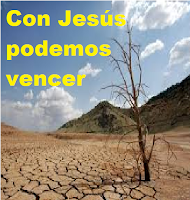 Jesús fue al desierto por varios motivos.