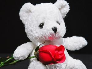 Imagenes con ositos de te amo, frases y lindos mensajes de amor gif