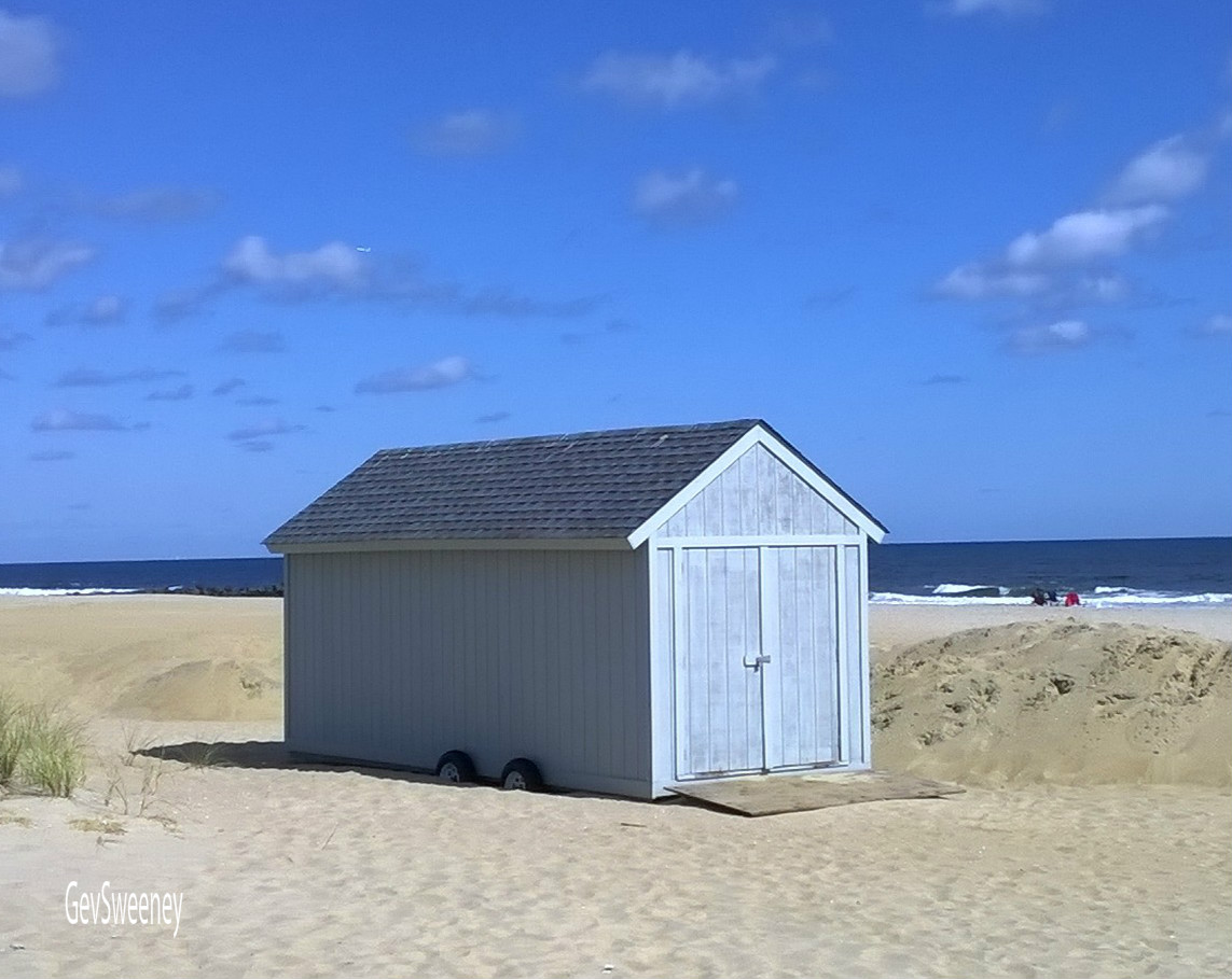 SEEN: Lonely Shed, Ocean Grove