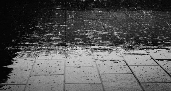 https://pixabay.com/pl/deszcz-pod%C5%82ogi-wody-mokre-krople-122691/