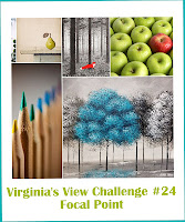 http://virginiasviewchallenge.blogspot.com.au/2016/10/virginias-view-challenge-24.html