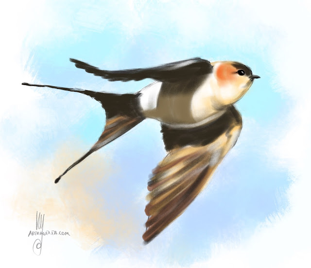 Red-rumped swallow Bird painting by Artmagenta
