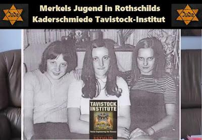 Tavistock Institut Merkel