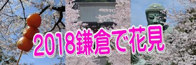 2018鎌倉で花見