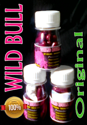obat kuat wild bull