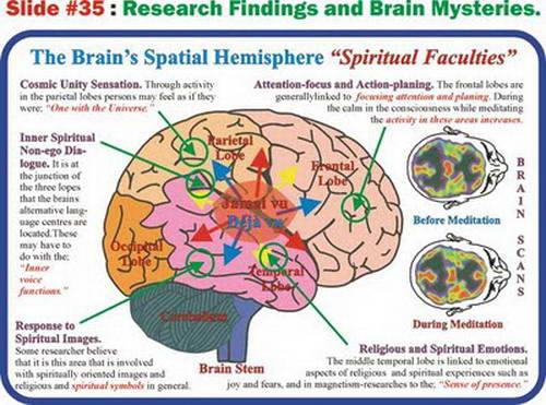 Manakala trilion saraf lagi menghubungkan serat yang disebut sinapses. Otak  manusia mampu menyimpan 100 ribu fakta dalam suatu masa dan berjutajuta  fakta ... 513351572b