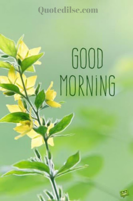 good morning images with quotes hd