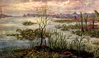 Período Siluriano (438 milhões de anos)