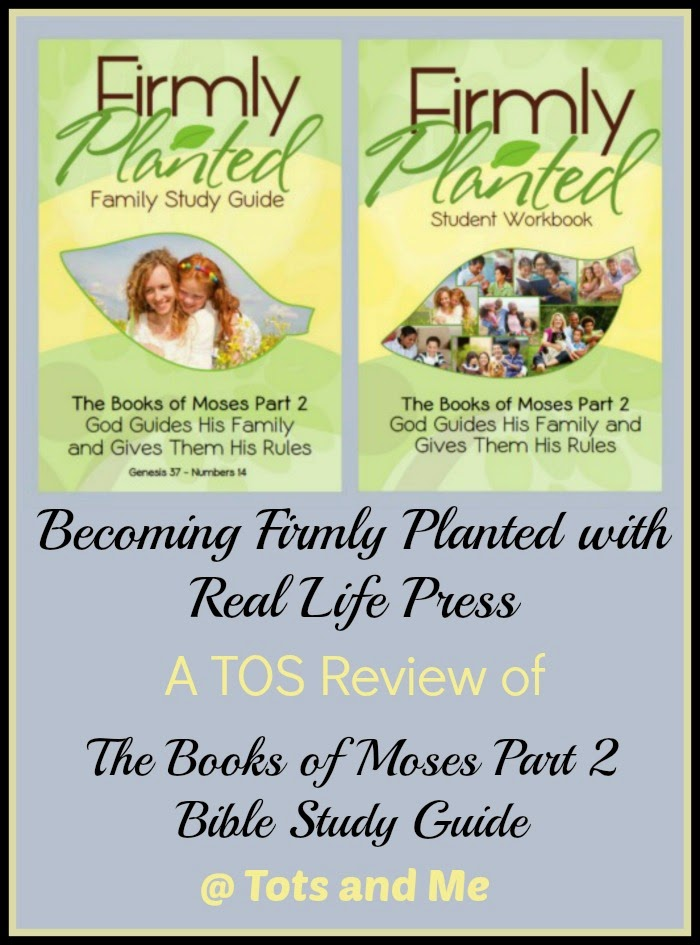 Tots and Me    Growing Up Together: Becoming Firmly Planted