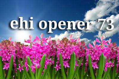 ehi opener 73