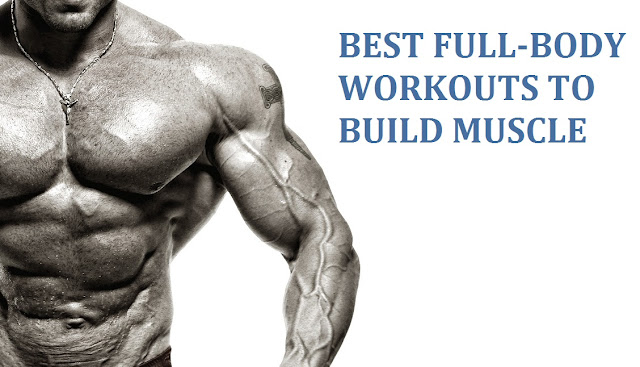 Best Workout to Build Muscle