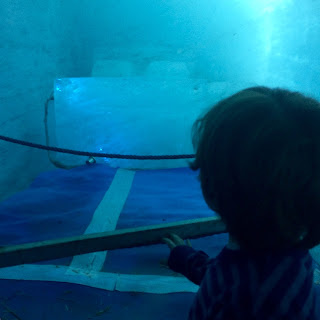 David in a blue ice-cave with an ice bed for World Toilet Day