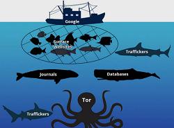 Trick Membuka dan Mengakses Deep Web tanpa Tor Browser