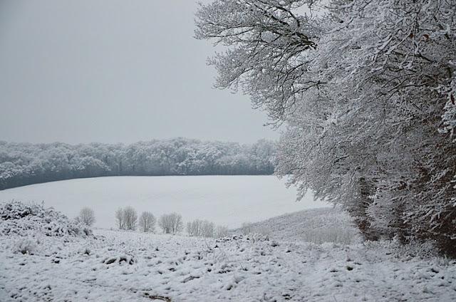 Neige Yonne Puisaye Champ