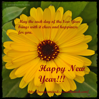 New year, happiness, cheer, Happy New Year, Card, New Year card