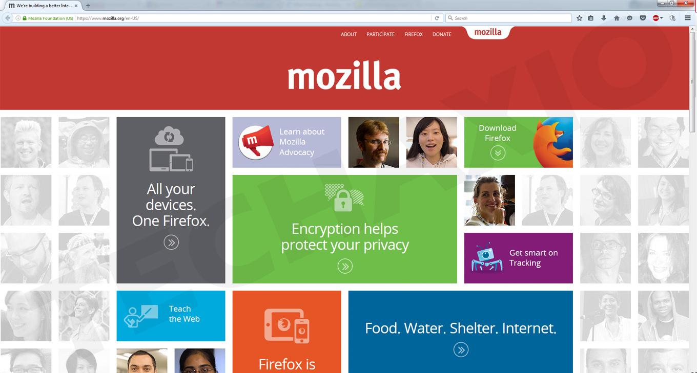 Mozilla Firefox Browser Screenshot