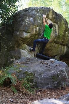 Pot de Terre, Rocher Canon, Fontainebleau