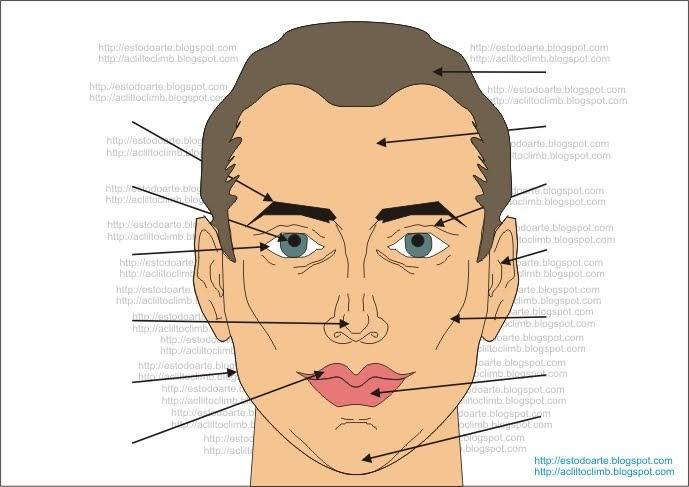 Dibujos De Aplicacio De Partes De La Cara: ES Todo ARte: Parts Of The Face