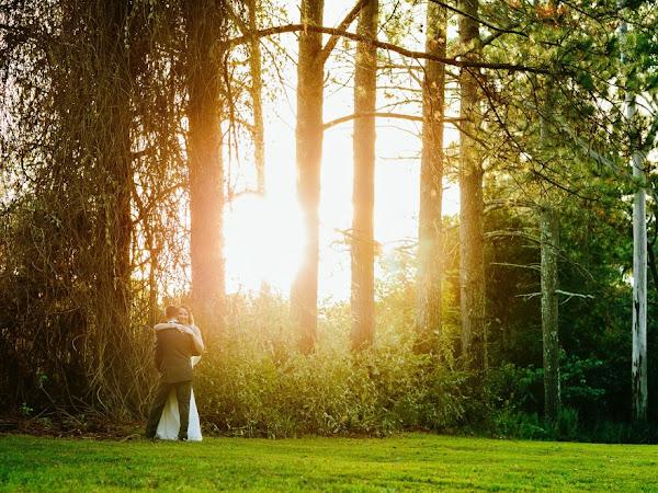 ➳ PETHERS RAINFOREST RETREAT | MT TAMBOURINE WEDDING VENUE Q&A {GOLD COAST}