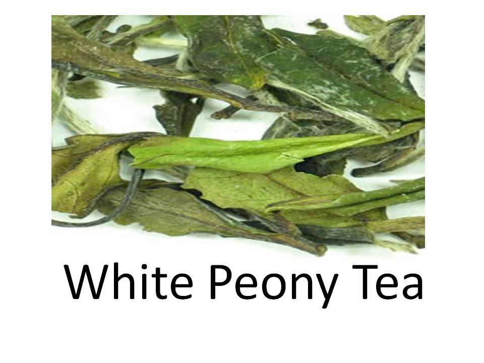 TEH PUTIH | WHITE TEA INDONESIA: KANKER OTAK