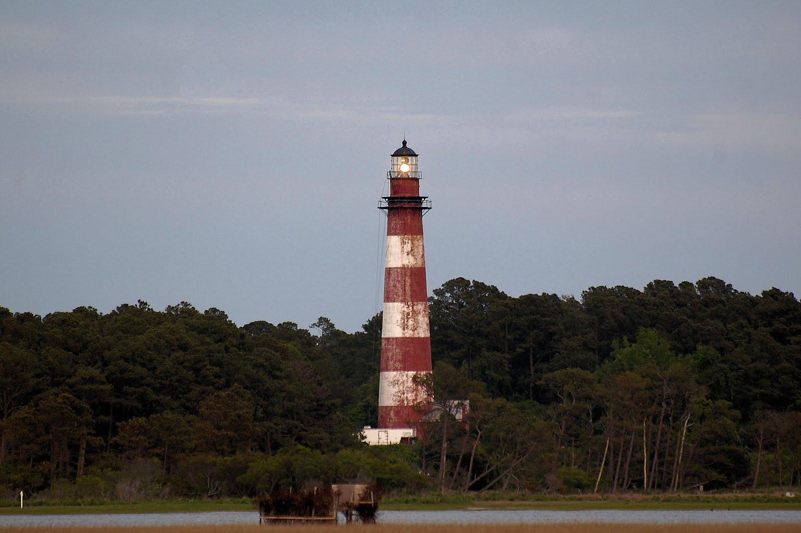 Harbor Light Adventures Travel And Tours Assateague