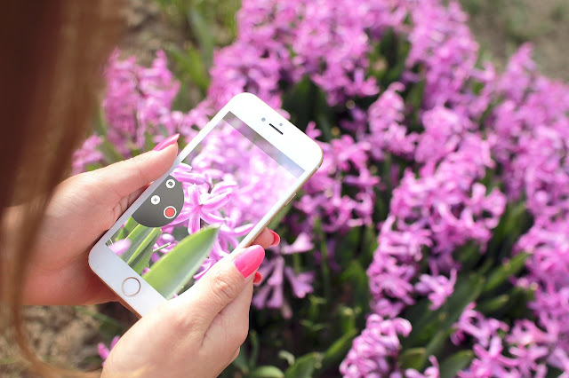 Tag gode billeder med enkelt udstyr