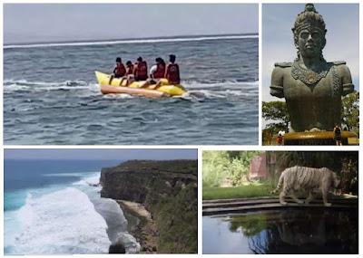 Paket Bali Safari and Marine Park Combinasi