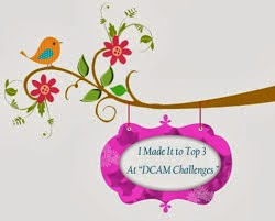 at DCAM challenges