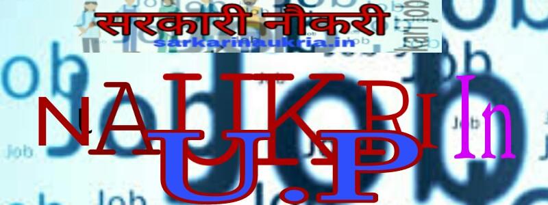 U.P Allahabad high court Naukri