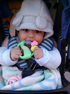 alqiuler de inflables precio bogota chia calle 80para bebes cumpleaños fiestas infantiles cuanto cuesta economicos inflables grandes