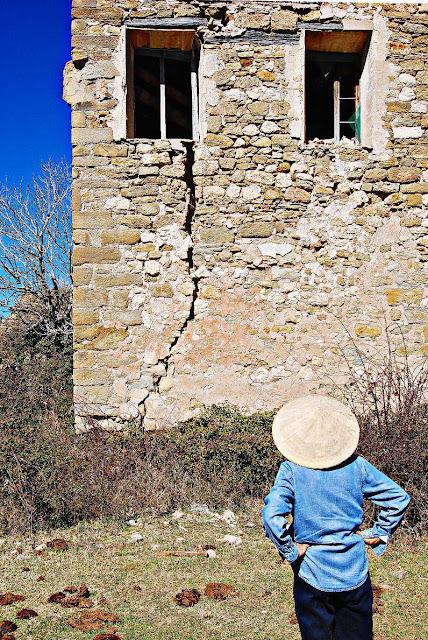 Grietas en un muro de Lapenilla