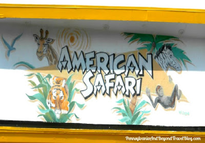 American Safari Wall Mural in Wildwood  New Jersey by MG Signs
