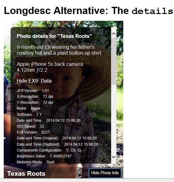 Longdesc Alternative:the details element. Sobre la imagen de un niño, hay una capa con scroll que contiene texto informativo acerca la imagen. En la parte inferior de la imagen está el texto Texas Roots y el botón 'Hide Photo Info'