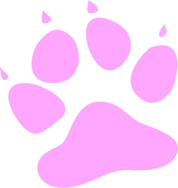 Dog Cat Shelter Claremont Road