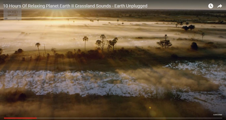 BBC 免費推出大自然抒壓音樂電影,50個小時的地球視覺音景