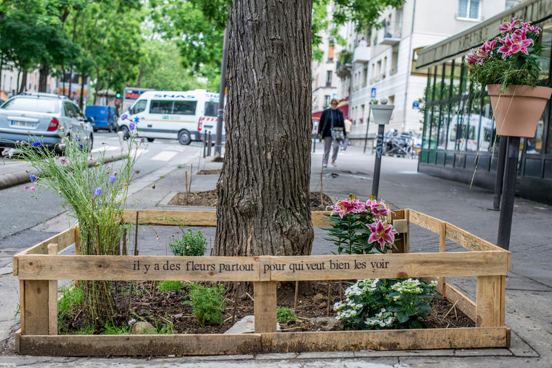 Permiso para vegetar París
