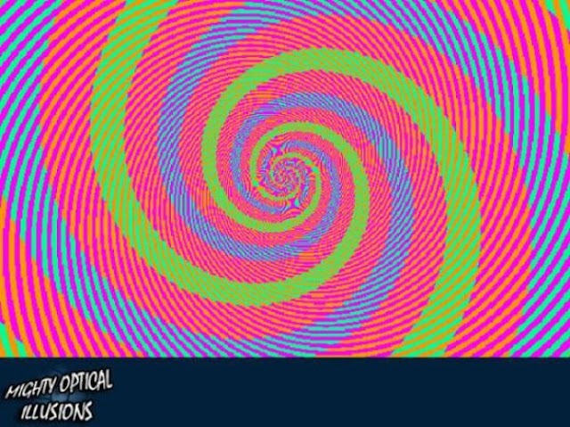 optical illusions many pink mighty gifs birds identical too these colors izismile
