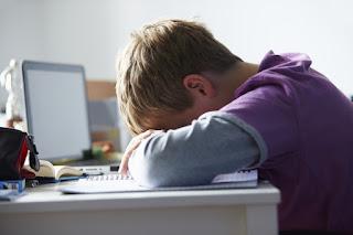 Niño rubio dormido en clase sobre su libro, con el ordenador encendido.