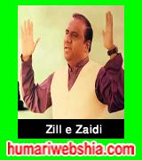 http://www.humariwebshia.com/p/zill-e-raza-zaidi-manqabat-2004-to-2017.html