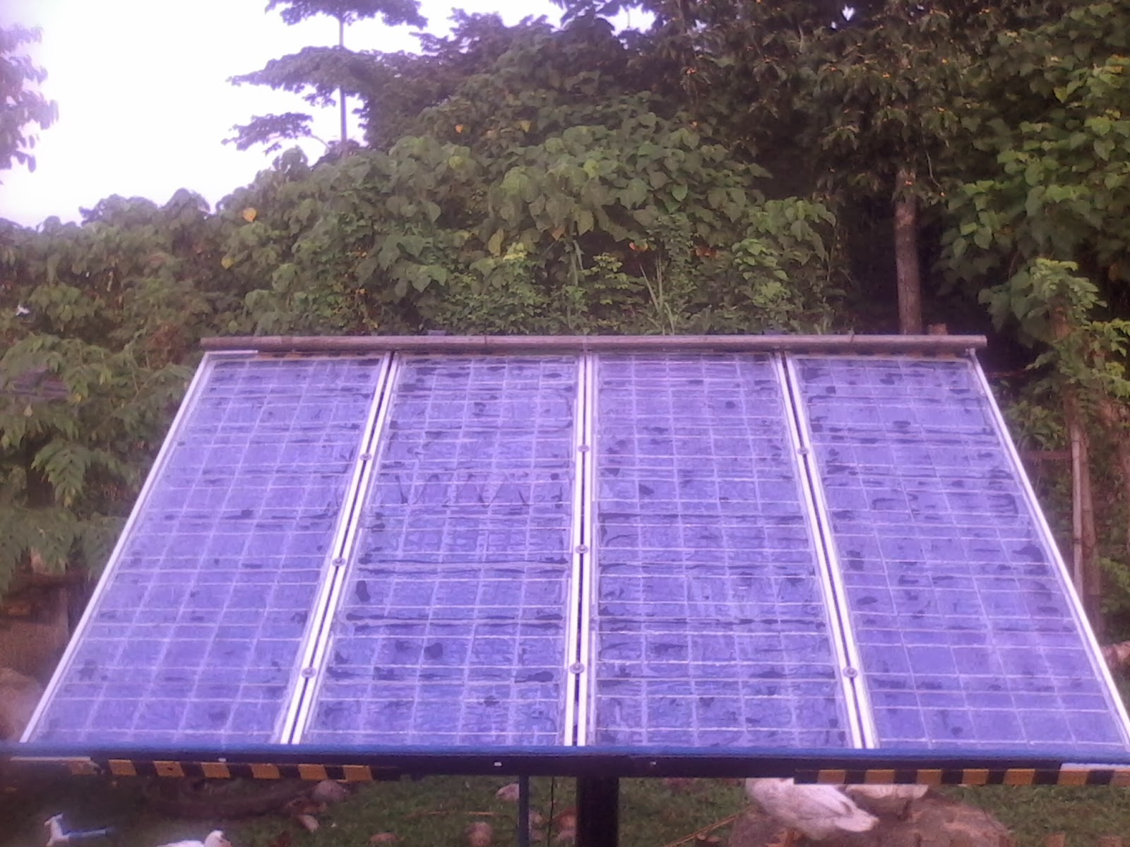 Blog Article From Philippines Eco Worthy Solar Panel