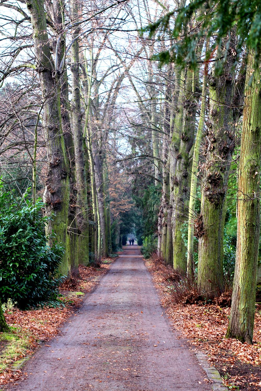 Melaten Cemetery, Cologne - UK travel & lifestyle blog